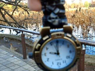 時計撮ったんだか鴨撮ったんだか…(笑)